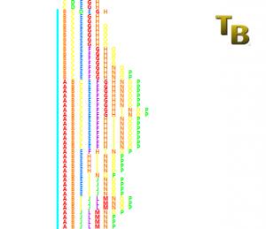 Market Profile TPO2